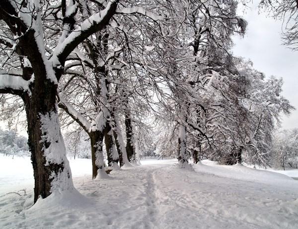 Karlovac. Izvor: Grad Karlovac