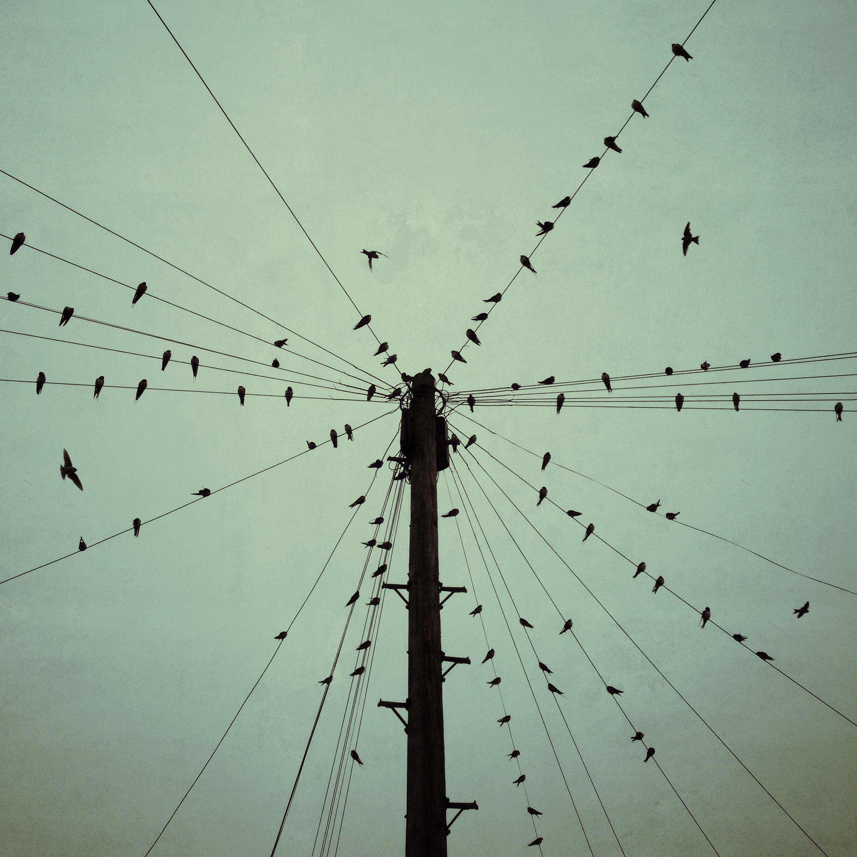 Sloboda. Foto: Skip. Izvor: https://www.flickr.com/photos/photogenix-lincoln/