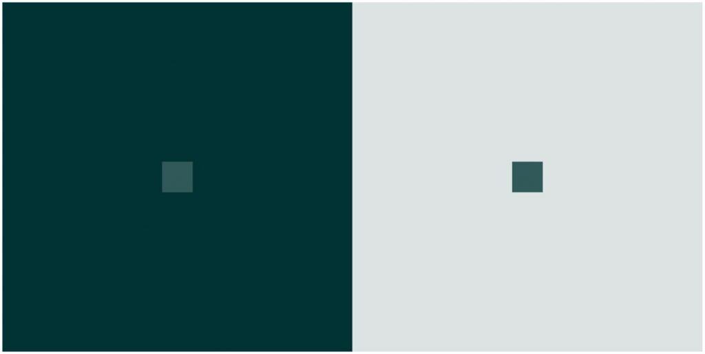 Različito, a isto. Izvor: https://upload.wikimedia.org/wikipedia/commons/9/95/Colour_shift.jpg